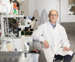 York University scientists have uncovered a unique set of genes that play a role in muscle cellular gene expression and differentiation which could lead to new therapeutic targets to prevent the spread of muscle cancer.