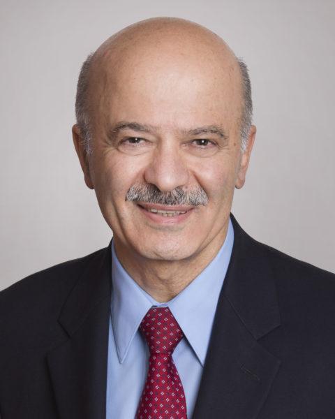 Headshot of Reza Moridi