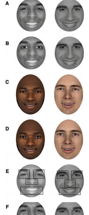 faces of different races