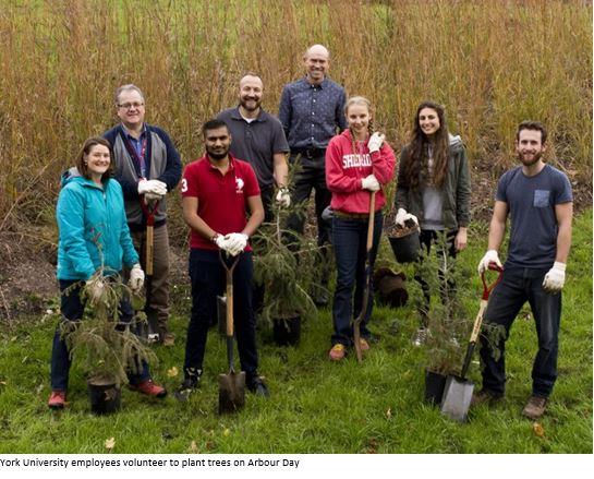 York University staff on field