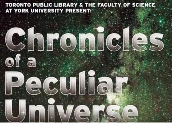 Chronicles of a Peculiar Universe